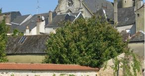 LE JARDIN MEDIEVAL - jardin médiéval (2)