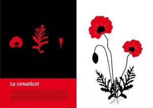 """Exposition """"Les herbiers d'Emilie Vast"""" @ Centre Culturel : Médiathèque"""