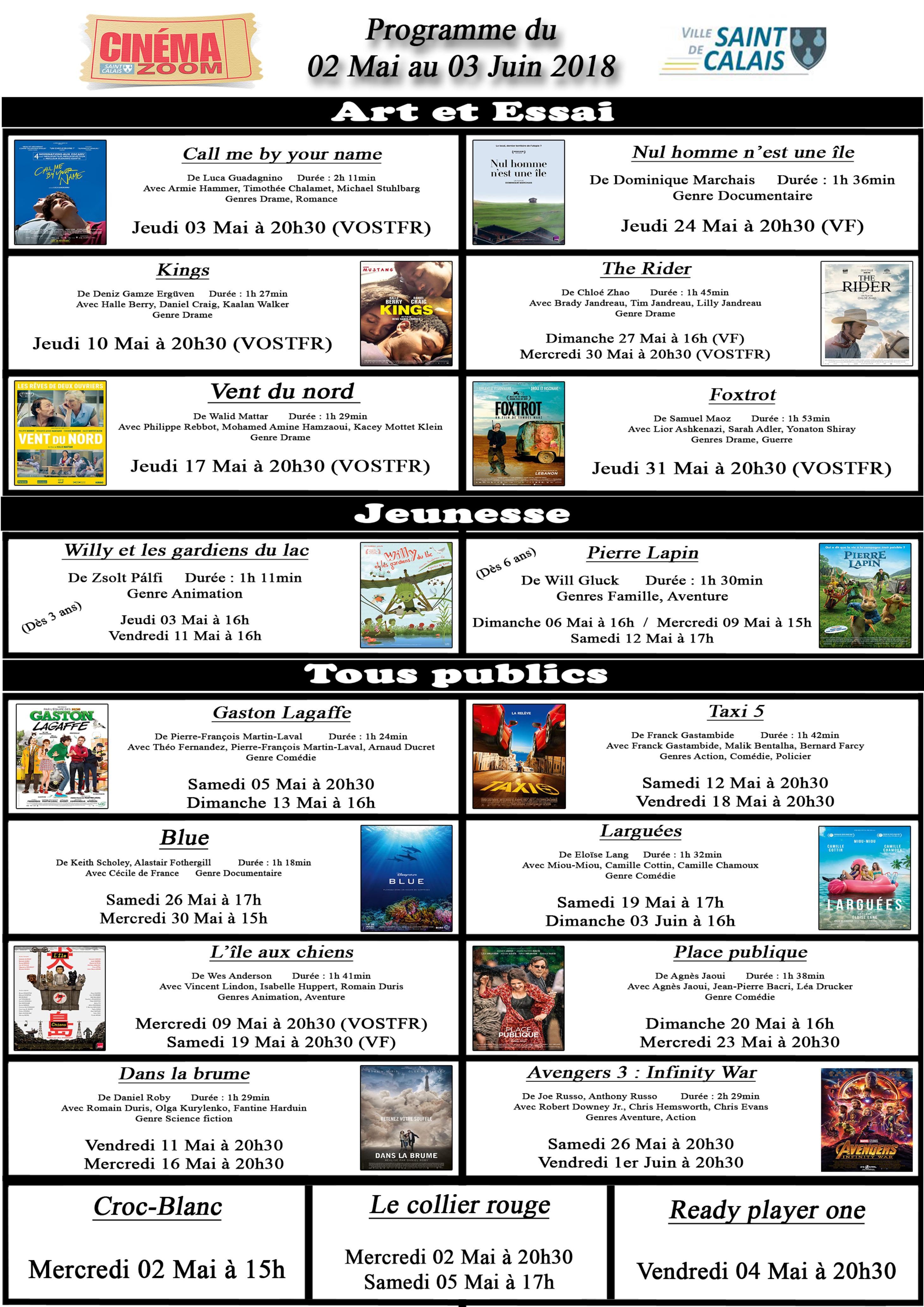 Affiche Programme Cinéma Zoom - 02 Mai au 03 Juin 2018