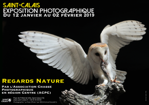 Exposition - Regards Nature