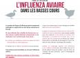 Virus influenza aviaire