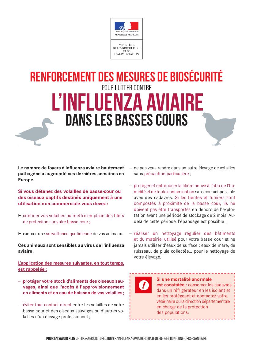 affiche influenza aviaire-1
